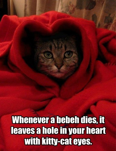Whenever a bebeh dies, it leaves a hole in your heart with kitty-cat eyes.