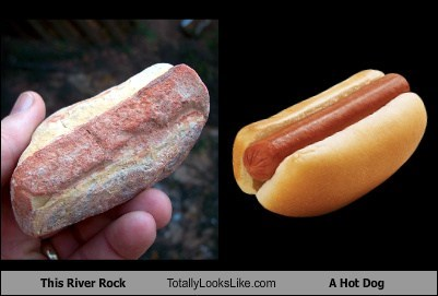 river rocks totally looks like hot dogs funny - 7884700672