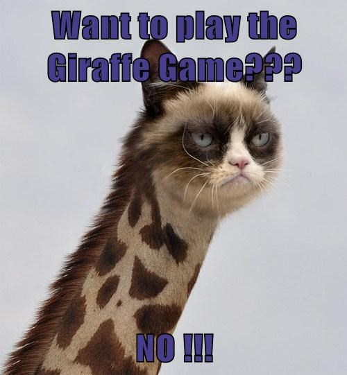 Want to play the Giraffe Game???  NO !!!