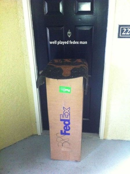 special delivery,funny
