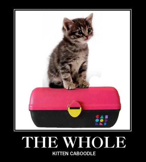 caboodles kitten puns - 7886557952