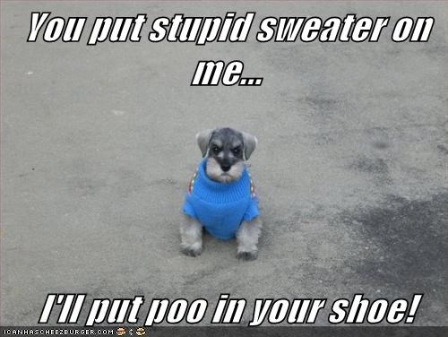 dogs,poo,revenge,sweater