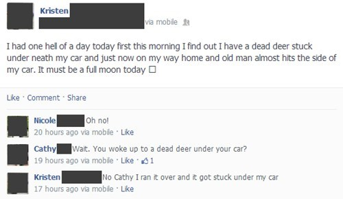 car accidents,deer,failbook