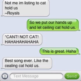 autocorrect text ceiling cat AutocoWrecks - 7887765504
