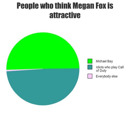 Michael Bay,megan fox,video games,Pie Chart