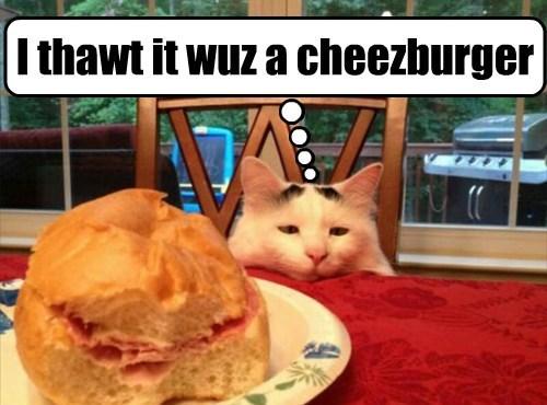 Cheezburger Image 7888486656