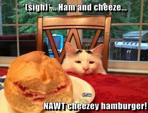 Cheezburger Image 7888616704