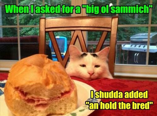 Cheezburger Image 7888667392