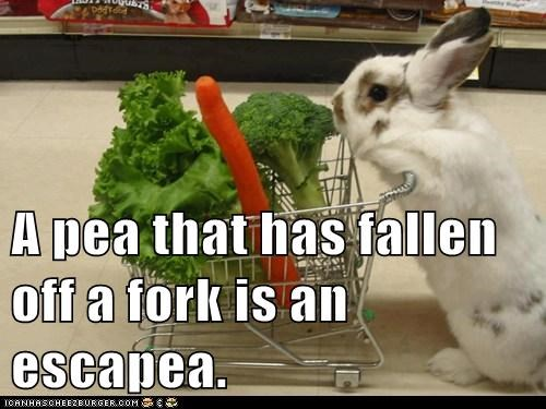 bunnies vegetables puns cute rabbits - 7888743424
