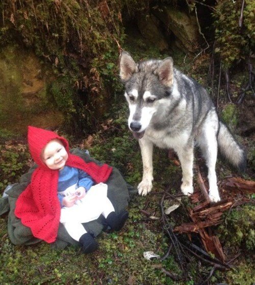 Babies,fairy tales,dogs,Little Red Riding Hood,cute