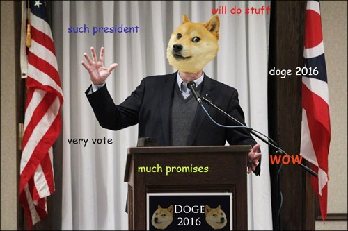 Memes shibe doge - 7889355776