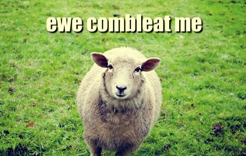 ewe,puns,sheep,sheepish,bleat