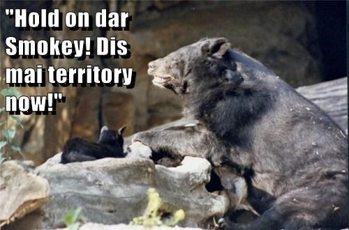 """Hold on dar Smokey! Dis mai territory now!"""
