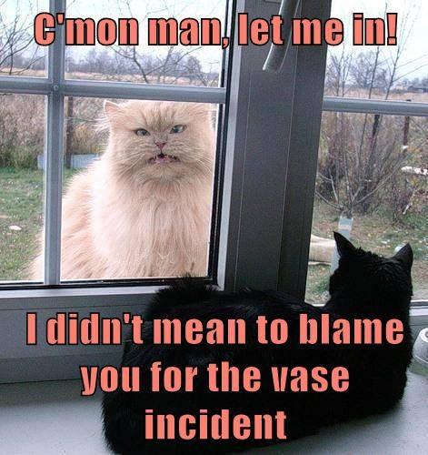 blame inside vase outside - 7890578176