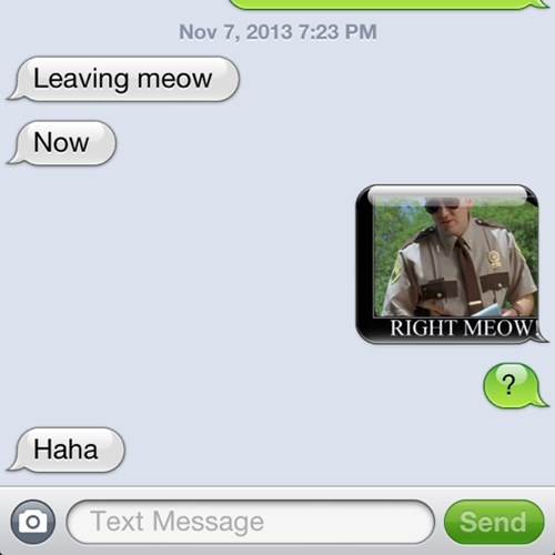 autocorrect right meow text super troopers g rated AutocoWrecks - 7890917120