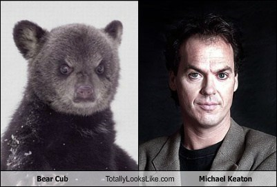bear cub,Michael Keaton,totally looks like,funny