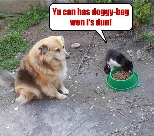 Yu can has doggy-bag wen i's dun!