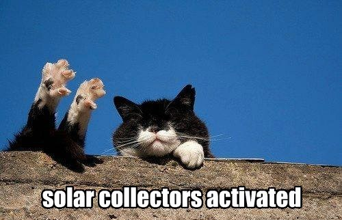 solar collectors activated