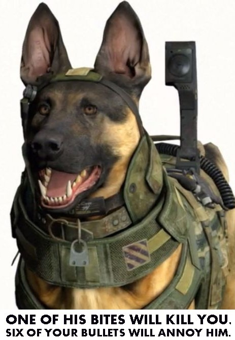 call of duty,call of duty ghosts,riley