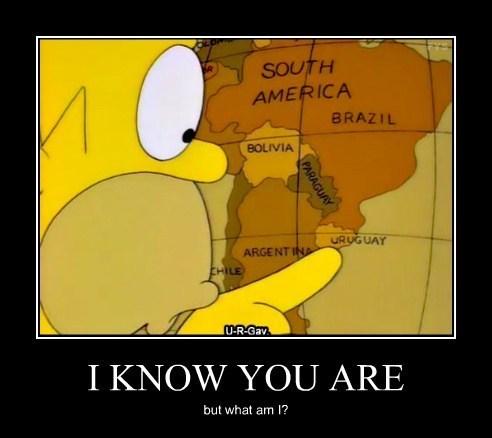 wtf homer uruguay funny - 7892387328