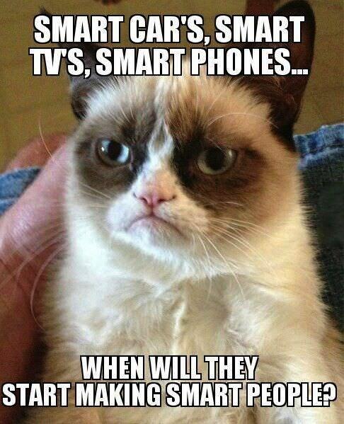 Memes,people,Grumpy Cat