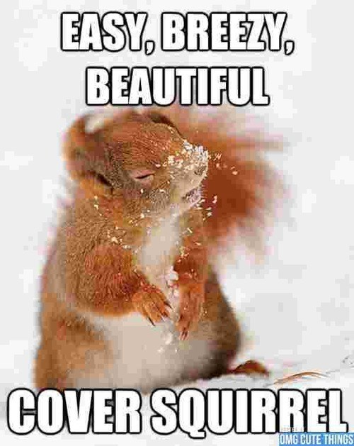 cover girl,cute,pun,parody,squirrels