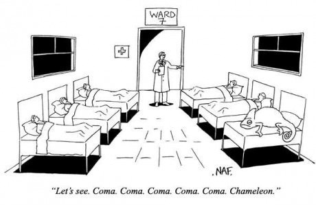 coma culture club chameleon funny web comics - 7892570112