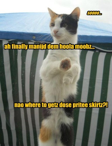 ah finally manijd dem hoola moobz... nao where to getz dose pritee skirtz?! soooo...