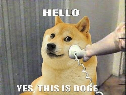 Memes shibe doge - 7894072832