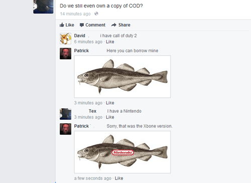 cod nintendo puns failbook g rated