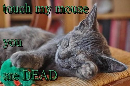 mine sleep Cats mouse - 7895320576