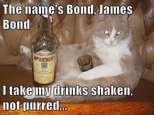drinking,james bond,cute,Cats