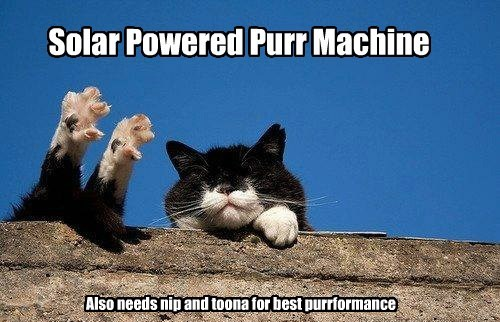 Solar Powered Purr Machine Also needs nip and toona for best purrformance