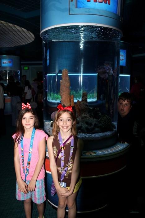 aquarium disney photobomb