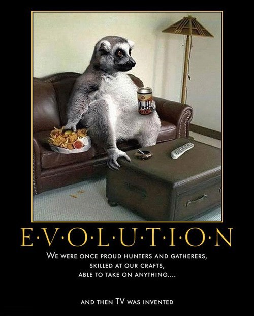 wtf evolution TV funny - 7896556544