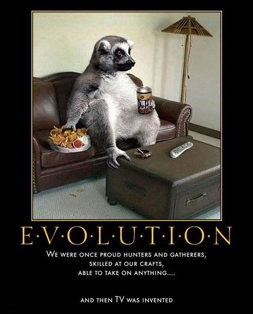 wtf evolution TV funny - 7896556544