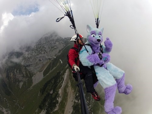 wtf furries parachuting funny