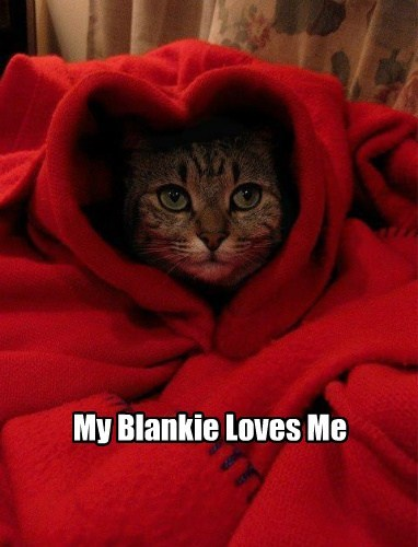 Cats cute blankie heart love nap - 7896706048