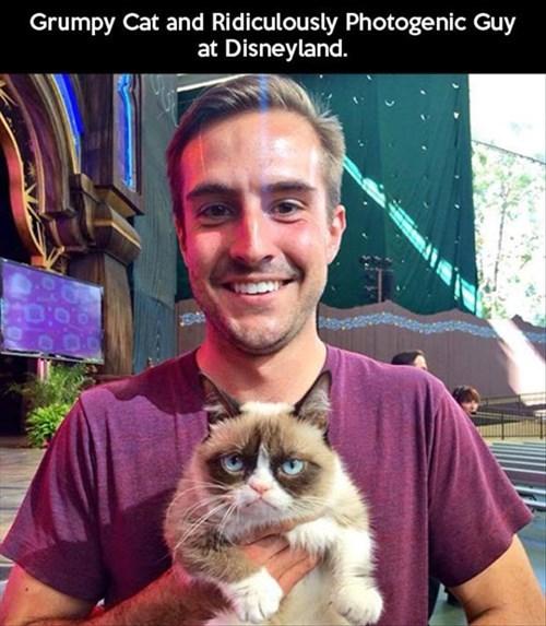 cute Memes tartar Grumpy Cat Rediculously Photogenic Guy - 7896744192