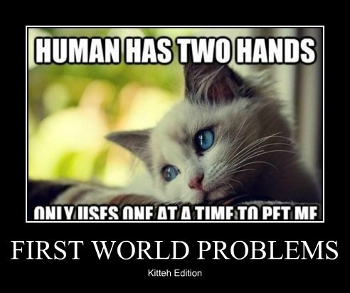 Cats First World Problems funny Sad - 7897504768