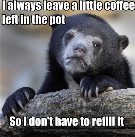 coffee Confession Bear Memes - 7897513728