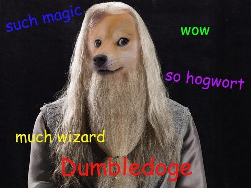 doge Harry Potter dumbledore - 7897990144