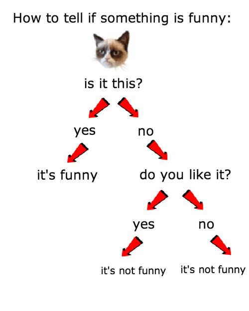 flow chart,Grumpy Cat