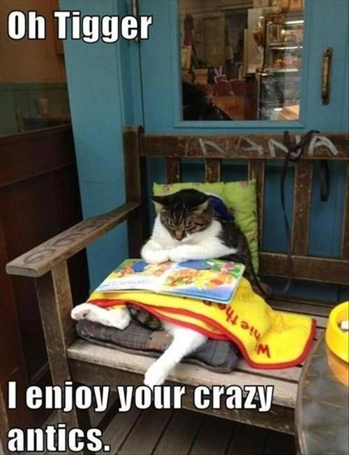 Cats,cute,books,winnie the pooh,reading,tigger