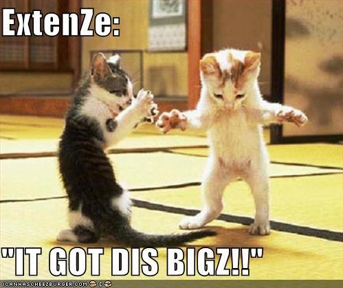 Extenze It Got Dis Bigz Cheezburger Funny Memes Funny