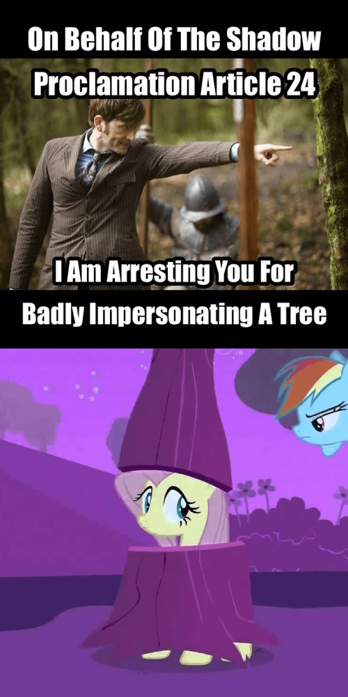 10th doctor,shadow proclamation,tree,fluttershy