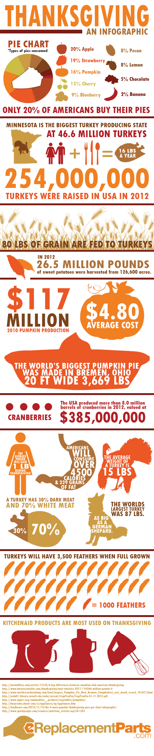 infographic thanksgiving - 7900877824