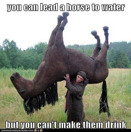 you can lead a horse to water but you can't make them drink