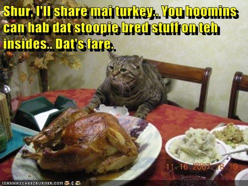 Shur, I'll share mai turkey.. You hoomins can hab dat stoopie bred stuff on teh insides.. Dat's fare.