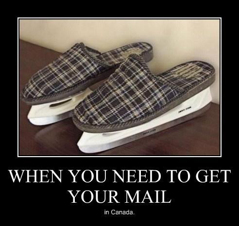 Canada wtf slippers ice skates funny - 7901167360